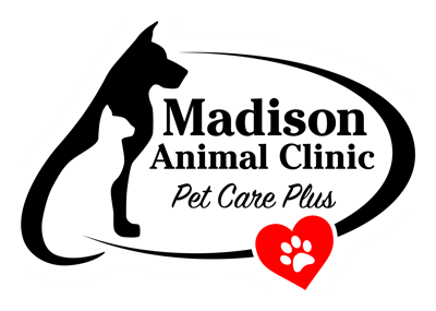 Madison Animal Clinic